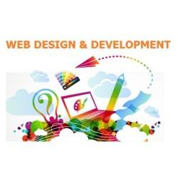 WebSite Solution - Startup